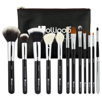 12 BRUSH SET BASIC PROFESSIONAL