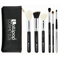 6 BRUSH SET PROFESSIONAL