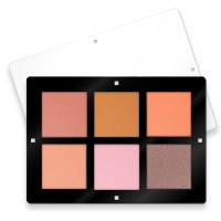 6 COLORS BLUSH PALETTE